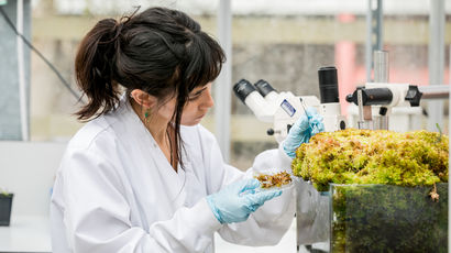 Student researches plants in the Environtron