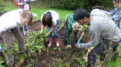 Volunteers helping in a community garden.