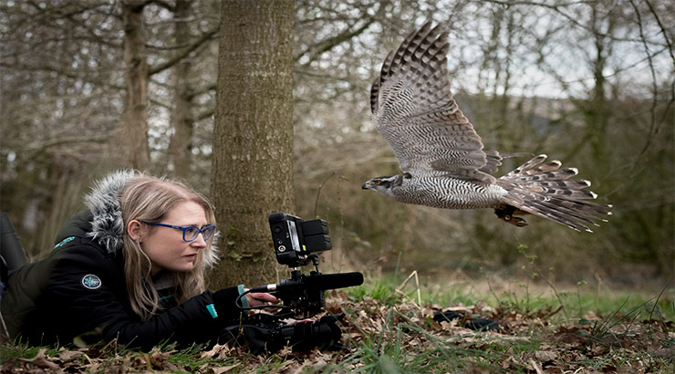 Student filming wildlife