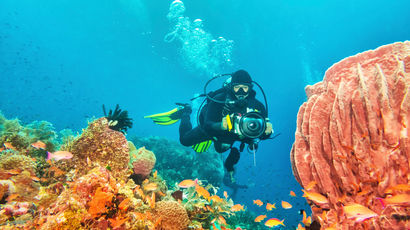 Scuba diver researching coral reef
